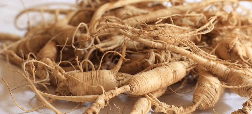 Close up of ginger root