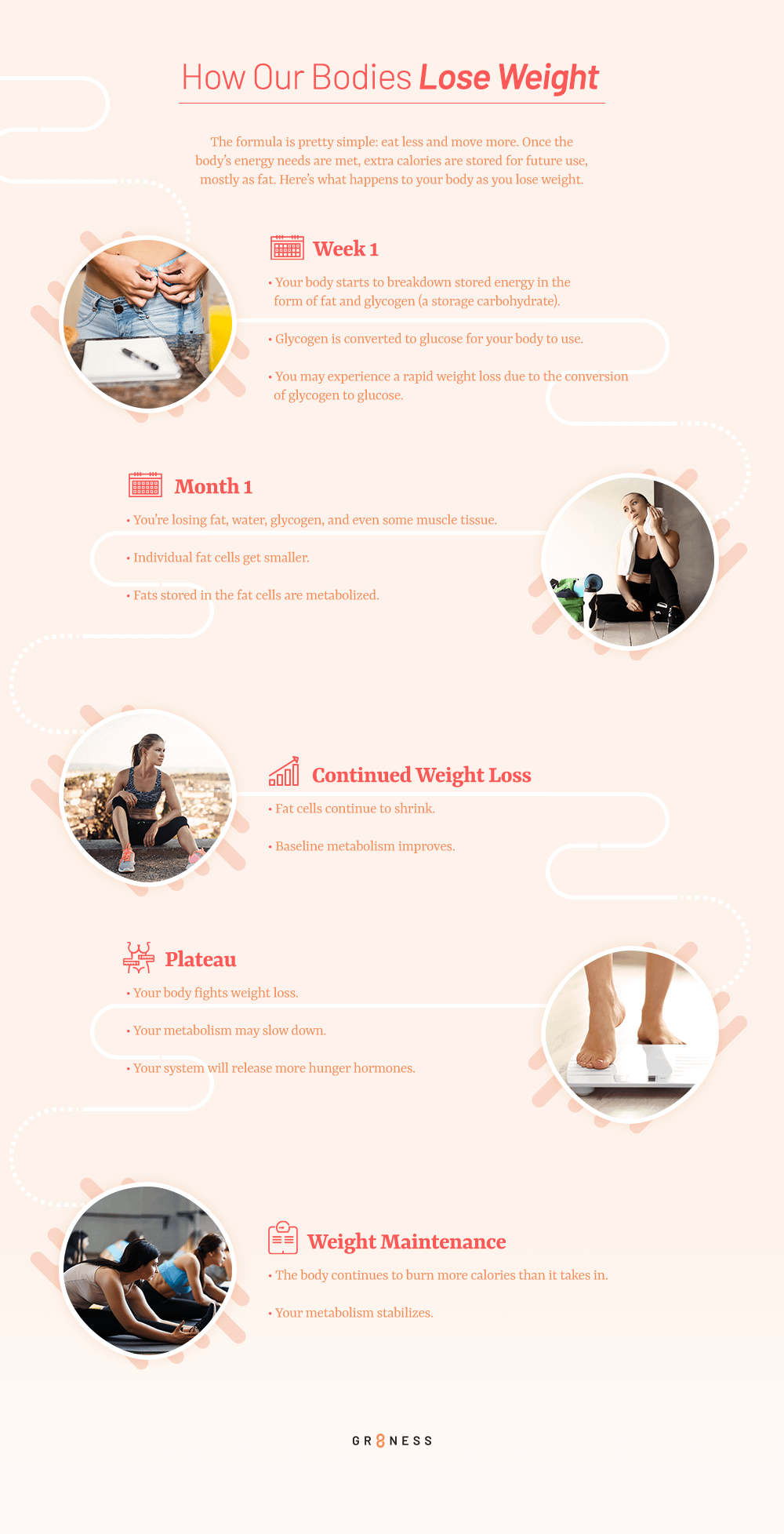 Step by step guide about how our body loses weight overtime