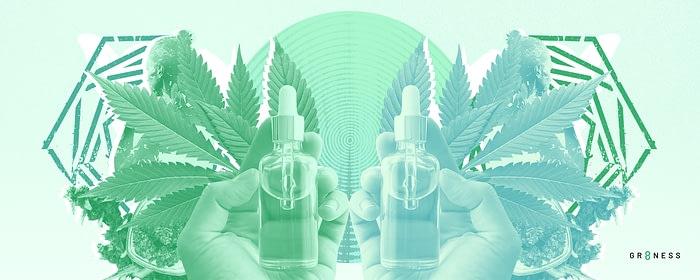Bottles of CBD oil in front of hemp plants