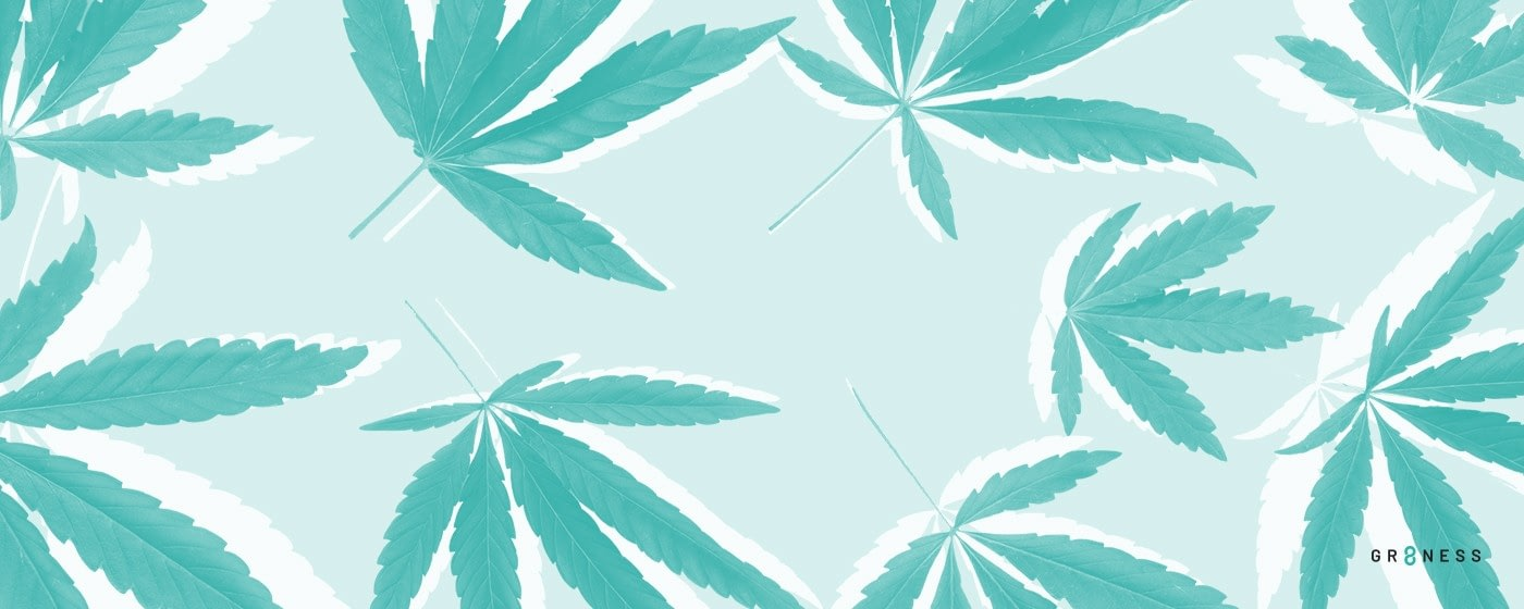 marijuana leaf pattern used for study of cbd vs thc