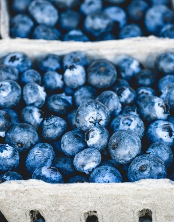 A up close shot of a carton of blueberries
