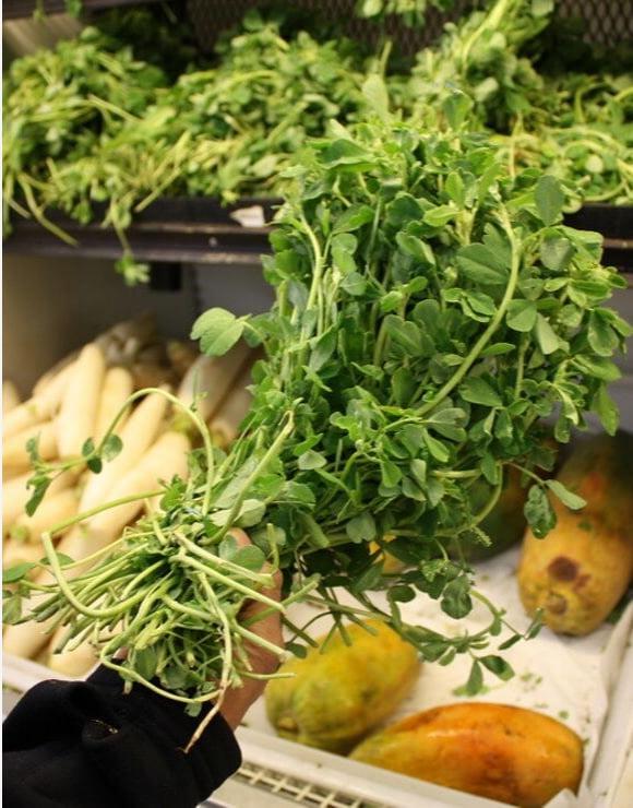 Mediterranean green herb known as Fenugreek