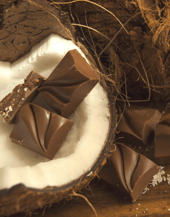 Pieces of chocolate with a coconut