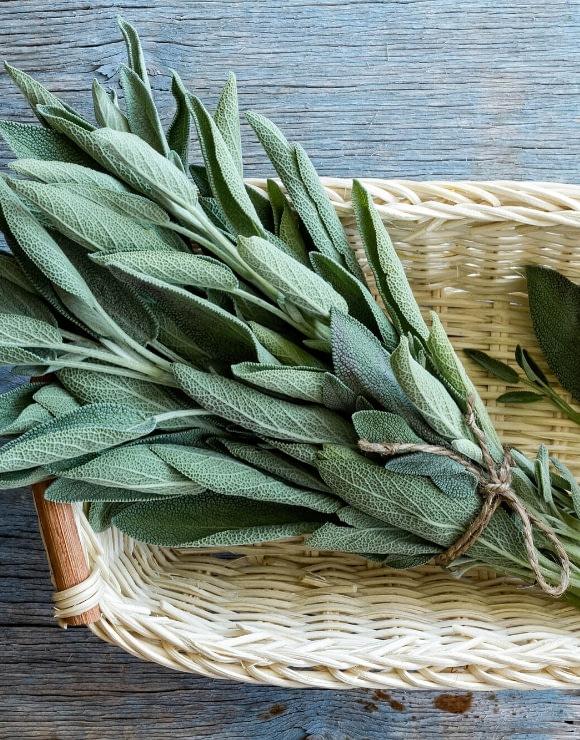 a bundle of sage leaves tied in a weaved basket