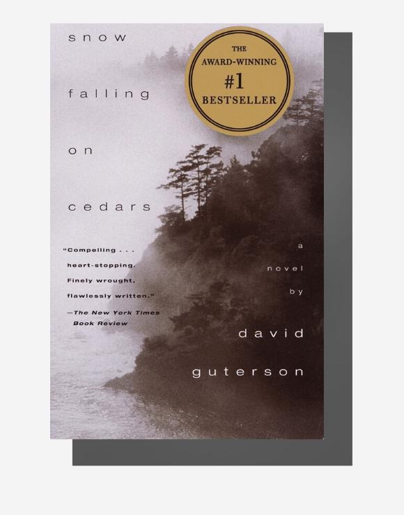 Cover of the award-winning best seller novel