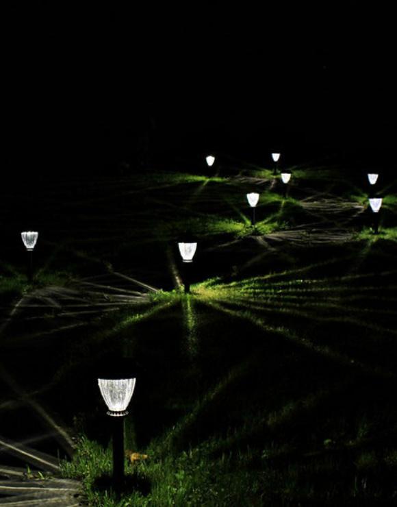 Solar power lawn lights illuminating a field at night
