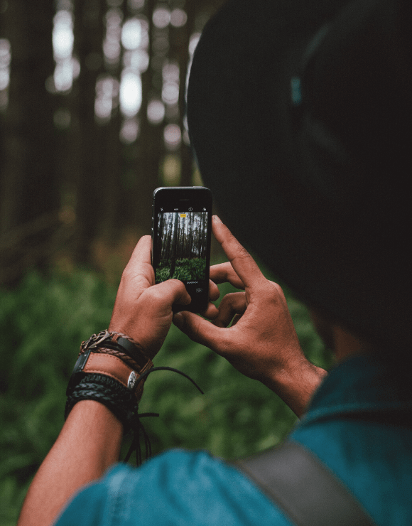 Man using smartphone to take a picture of the forest