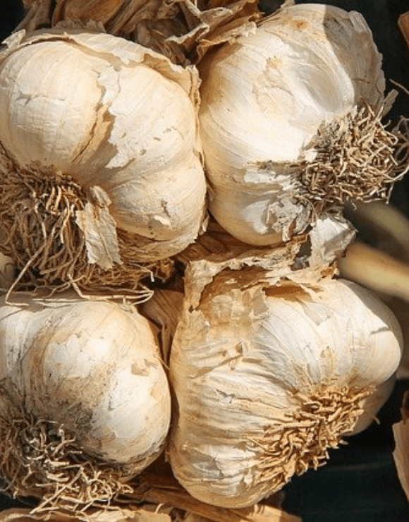 Four large unpeeled onions that boosts respiratory health